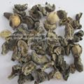 amla-amla-emblica-officinalis-AL shifa Natural Herbal Laboratories (Pvt) Ltd