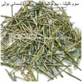 ephedra-vulgaris-AL shifa Natural Herbal Laboratories (Pvt) Ltd